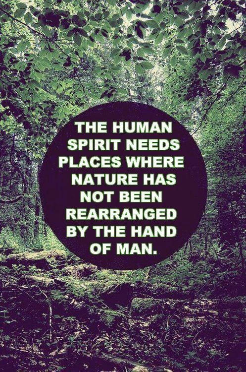 mw human spirit